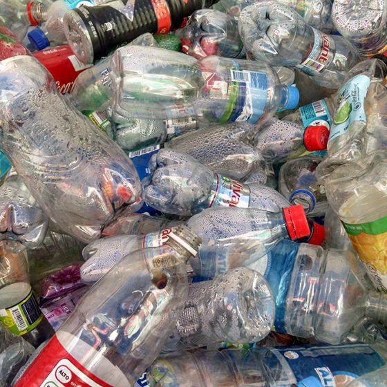 recolección botellas